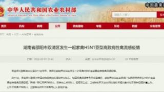 china toriinflu 320x180 - 鳥インフルエンザ「H5N1型」ニワトリが発症!対策は?中国 湖南省