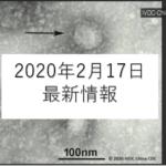 coronavirus gazo 2 150x150 - 新型コロナウイルスの予防は食べ物でできるか?外食でのポイントは?
