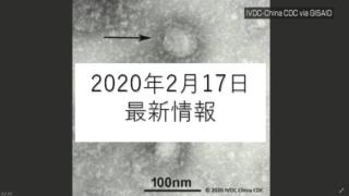 coronavirus gazo 2 320x180 - 新型コロナウイルス日本国内2020年2月17日最新情報まとめ
