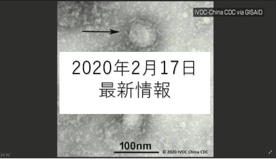 coronavirus gazo 2 - 新型コロナウイルス日本国内2020年2月17日最新情報まとめ